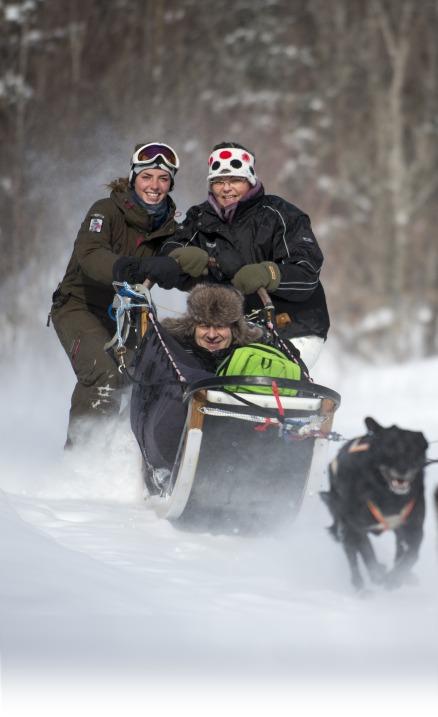 Vivre l'expérience de conduire un traineau à chiens