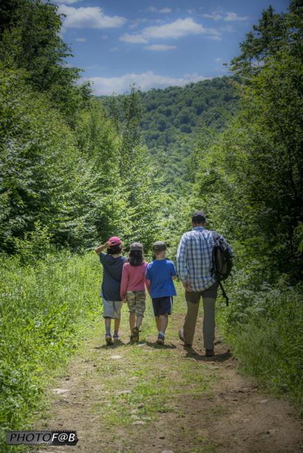 Journée aventure survie en forêt