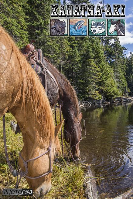 Équitation dans les Laurentides