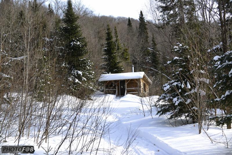 Hébergement cabane bois rond
