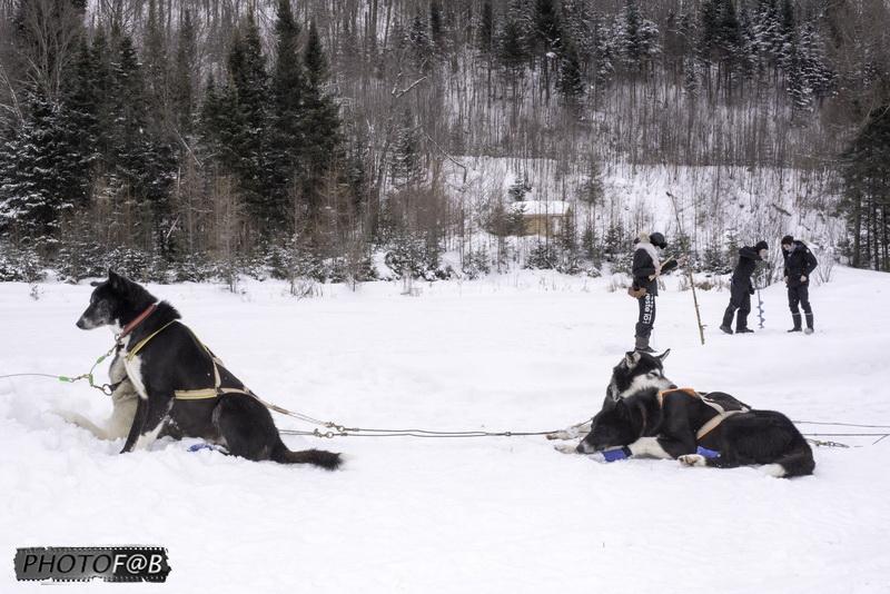 Truite pêche sur la glace