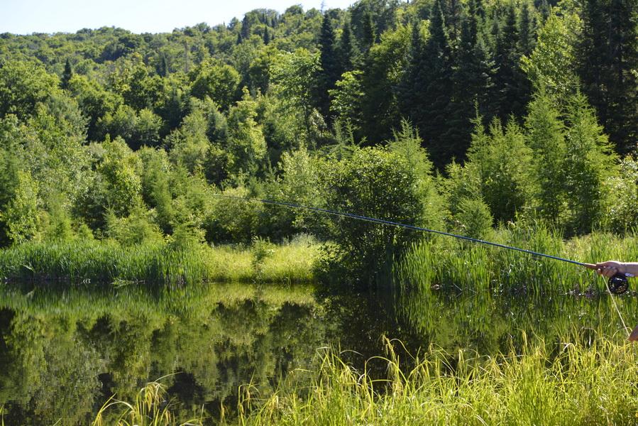 Lacs, étangs pour pêcheurs